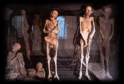 [Immagine: mummie02.jpg]
